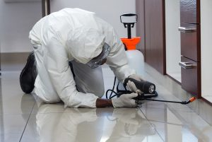 Installing pest interdiction technology in a commercial office building